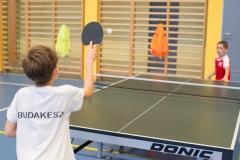 csaladi_ping-pong_2017-10