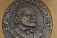 2019. július 2. Semmelweis nap